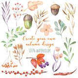 Set of watercolor autumn plants: yellow leaves, fall berries, acorns and other. Hand painted isolated on a white background vector illustration