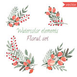 A set of watercolor berries, flowers and leaf. Royalty Free Stock Photo