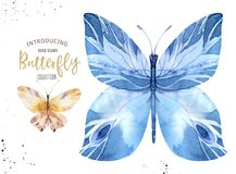 Set of watercolor boho butterfly. Vintage summer isolated spring art. Watercolour illustration. design wedding card. Set of watercolor butterfly. Vintage summer stock illustration