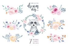 Set of watercolor boho floral bouquets with raccoon. Watercolour. Bohemian natural frame: leaves, feathers, flowers, Isolated on white background. Artistic royalty free illustration