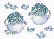 Set of watercolor bouquet of forget-me-nots flowers stock illustration