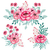 Set Of Watercolor Bouquets With Pink Roses And Leaves Royalty Free Stock Photo