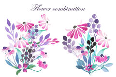 Set of watercolor bouquets with purple flowers, leaves and plants Stock Photography