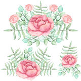 Set Of Watercolor Bouquets With Roses And Ferns Royalty Free Stock Image