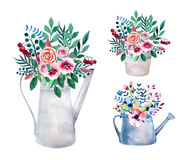 Set of watercolor bouquets. spring flowers in pot. Rustic Royalty Free Stock Photography