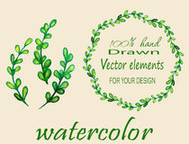 Set of watercolor branches. Stock Images
