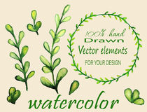Set of watercolor branches. Stock Photography