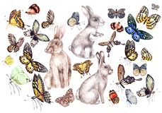 Set with watercolor butterfly and bunnies.