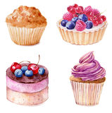 Set of watercolor cupcakes hand drawn illustration on white background. vector illustration