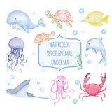 Set of watercolor cute animal under sea stock illustration