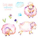 Set of watercolor cute pink sheeps, simple flowers and clouds illustrations Royalty Free Stock Images