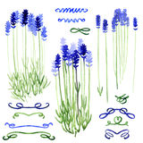 Set of watercolor design elements - lavender and ribbons Royalty Free Stock Photo