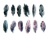 Set watercolor feathers black and pink. Set black and pink watercolor feathers illustration royalty free illustration