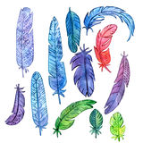 Set of watercolor feathers Stock Image