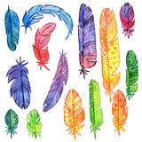 Set of watercolor feathers Royalty Free Stock Photos