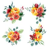 Set of watercolor floral arrangements. Collection of natural hand drawn prints with flowers and leaves Royalty Free Stock Image