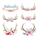 Set of watercolor floral boho antler print.  western bohemian de Royalty Free Stock Photography