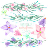 A set with the watercolor floral elements: branches, flowers, leaves Stock Photos