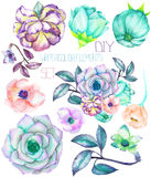 A set with the watercolor floral elements: succulents, flowers, leaves and branches Stock Photo