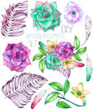 A set with the watercolor floral elements: succulents, flowers, leaves and feathers Stock Photos