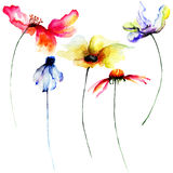 Set of watercolor flowers Royalty Free Stock Photography