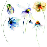 Set of watercolor flowers Royalty Free Stock Photos