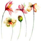 Set of watercolor flowers Stock Images