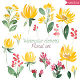 Set of watercolor flowers and leaf. Vector collection with leaves and flowers Stock Photos