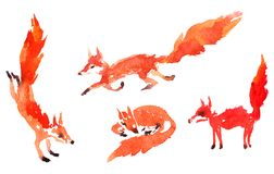 Set of watercolor foxes Stock Photos