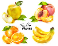 Set of Watercolor Fresh Fruits with Fine Dots Paper Texture. Hand Drawn Illustration of Yellow Apple, Peach, Orange and Banana. Isolated on White. Organic Eco Stock Photo