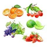 Set of watercolor fruits orange, cherry, lime, lemon, grape, strawberry isolated stock illustration