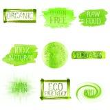 Set of watercolor green logo. Green watercolor logo design template set. Green watercolour hand drawn sign label emblem poster banner set. Eco concept design Stock Image