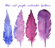 Set of watercolor hand drawn feathers Royalty Free Stock Images