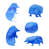 Set of watercolor hedgehogs. Set of blue vector watercolor hedgehogs vector illustration