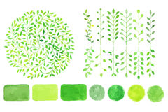 Set of watercolor logotypes. Green leaves, branches, plants  Stock Images