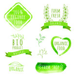 Set of watercolor organic food labels. Eco product. Badges and elements. Vector illustration for your design Royalty Free Stock Photo