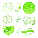 Set of watercolor organic food labels. Eco product. Badges and elements. Vector illustration for your design Stock Photos