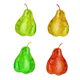 Set of watercolor pear isolated on white background, hand drawn Royalty Free Stock Images
