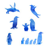 Set of watercolor penguin. Set of vector blue watercolor penguin on white background stock illustration