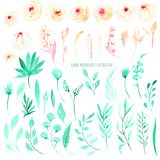 Set of watercolor pink roses and mint leaves floral elements illustration. Hand drawn isolated on a white background, for a greeting card, decoration of a Stock Images