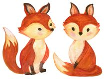 Set of watercolor red fluffy foxes in motion on white. Set of watercolor red fluffy lovely baby foxes in motion on white Hand drawn illustration royalty free illustration