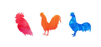 Set of  watercolor roosters. Hand drawn illustration isolated on white. It may be used for design a t-shirt, bag, postcard, Royalty Free Stock Image
