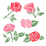 Set of watercolor rose flower design elements isolated on white. Stock Photos