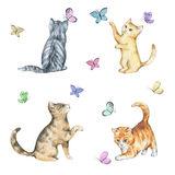 Set of watercolor seamless pattern with cute kittens. Baby cats playing with butterflies. Isolated on white Stock Photo