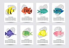 Set of watercolor tropical fish. Collection of card Stock Images