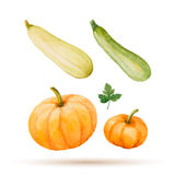 Set of watercolor vegetables. Royalty Free Stock Image