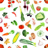Set of watercolor vegetables. Stock Photo