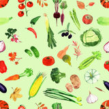 Set of watercolor vegetables.Template for your design. Stock Image