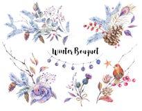 Set of watercolor vintage natural elements royalty free illustration