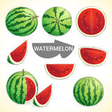 Set of watermelon in various styles vector format Royalty Free Stock Images